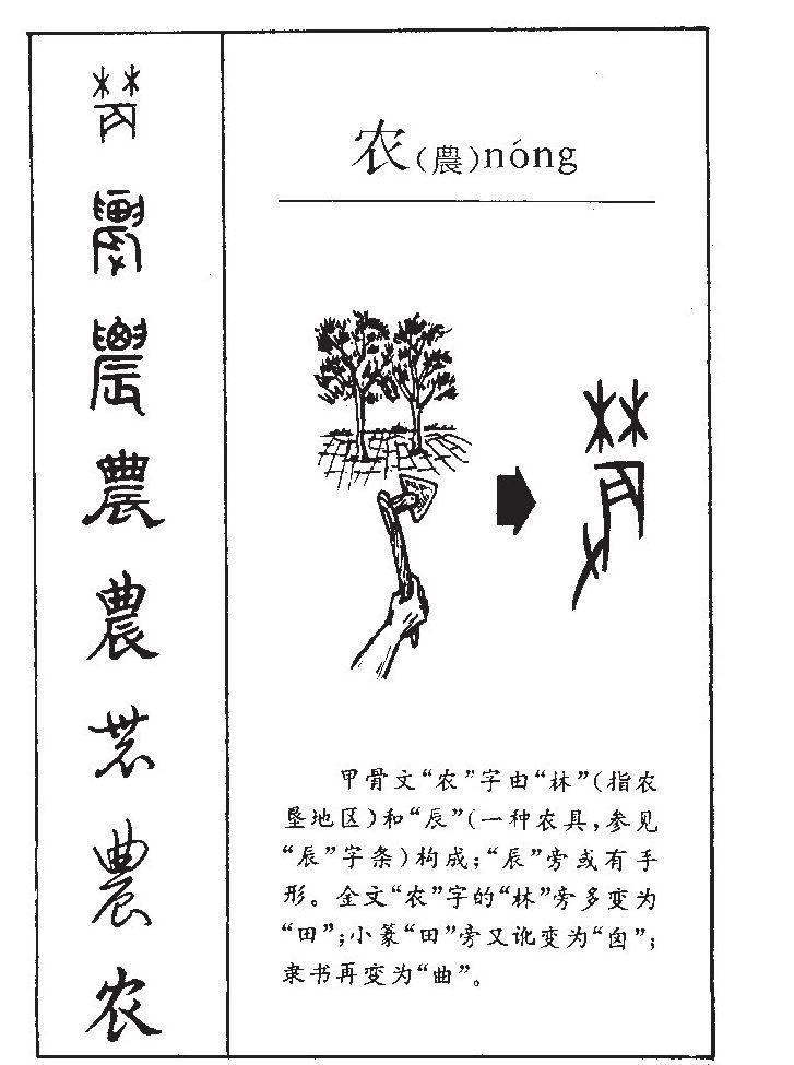 农的意思-农字五行属什么-农字取名的寓意- 起名网